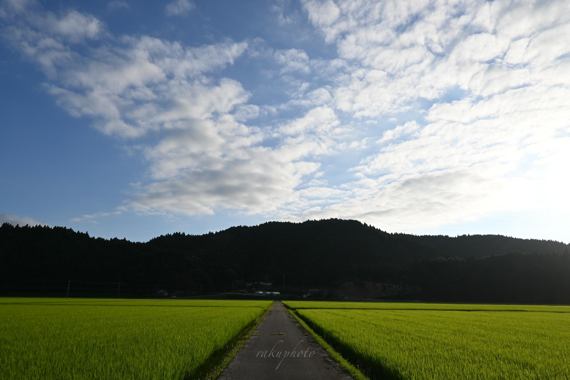 f:id:asanokawa:20210723195018j:plain