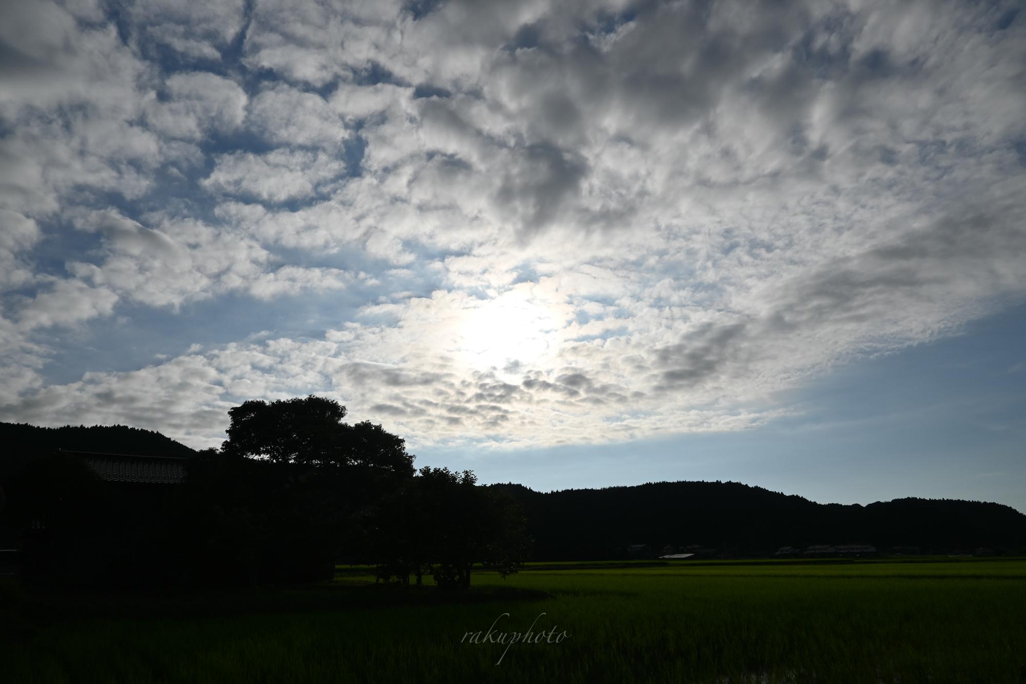 f:id:asanokawa:20210803171304j:plain