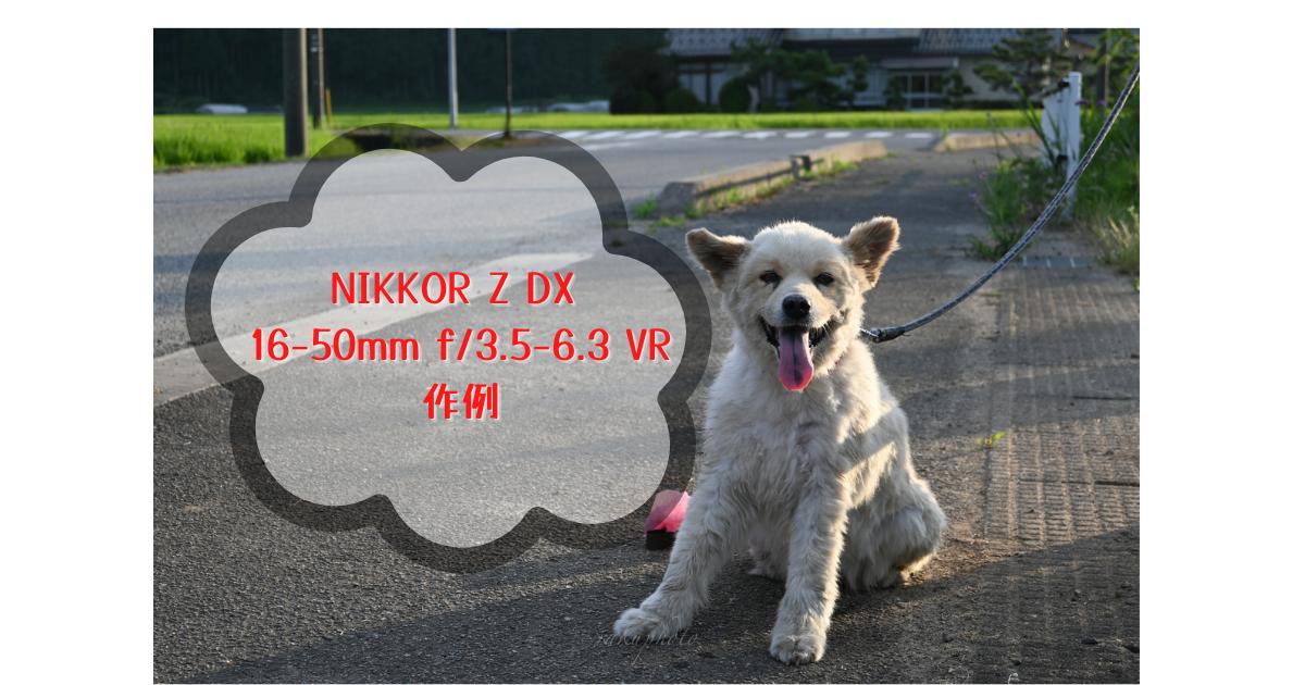 f:id:asanokawa:20210803174159p:plain