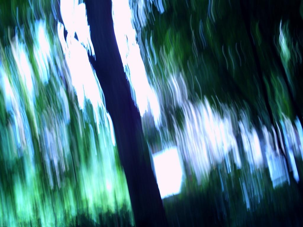 f:id:asanoki:20170613051204j:plain