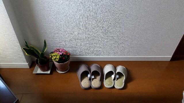 f:id:asanoomusubi:20180504210644j:image