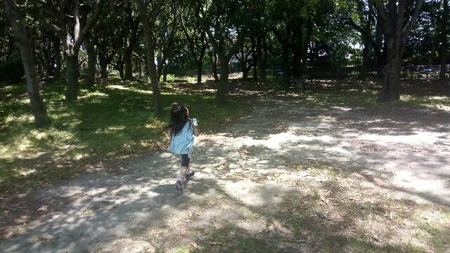 f:id:asanoomusubi:20180512202639j:image