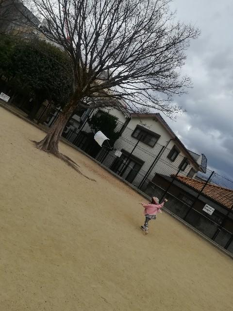 f:id:asanoomusubi:20190126184437j:image