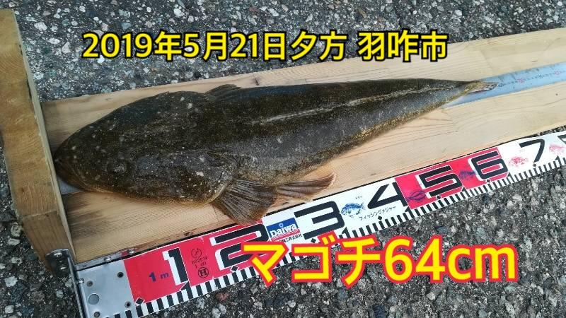 f:id:asanotsurigu:20190521215104j:plain