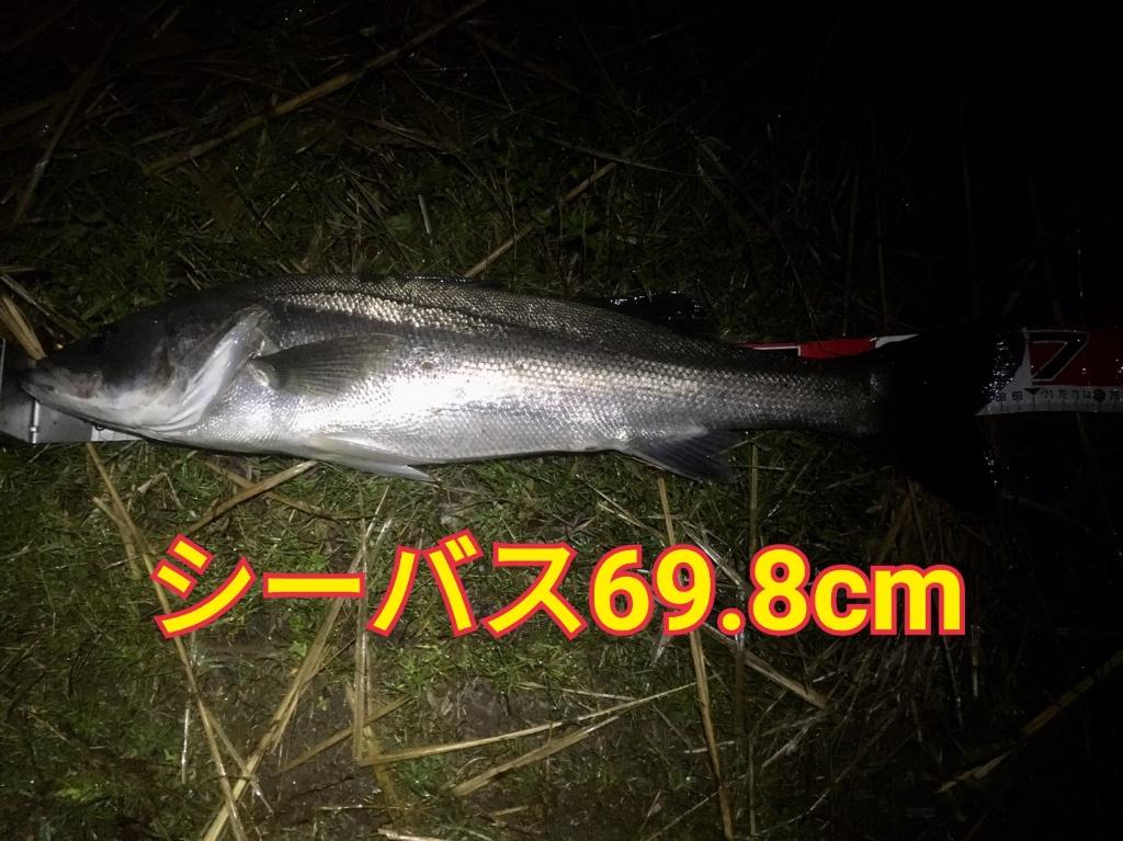 f:id:asanotsurigu:20190523215723j:plain