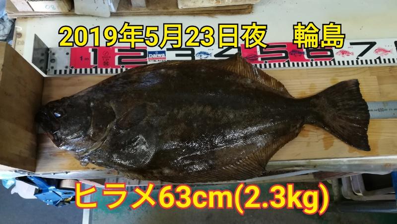 f:id:asanotsurigu:20190524141109j:plain