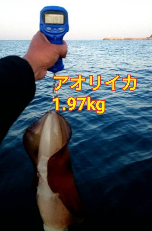 f:id:asanotsurigu:20190525110538j:plain