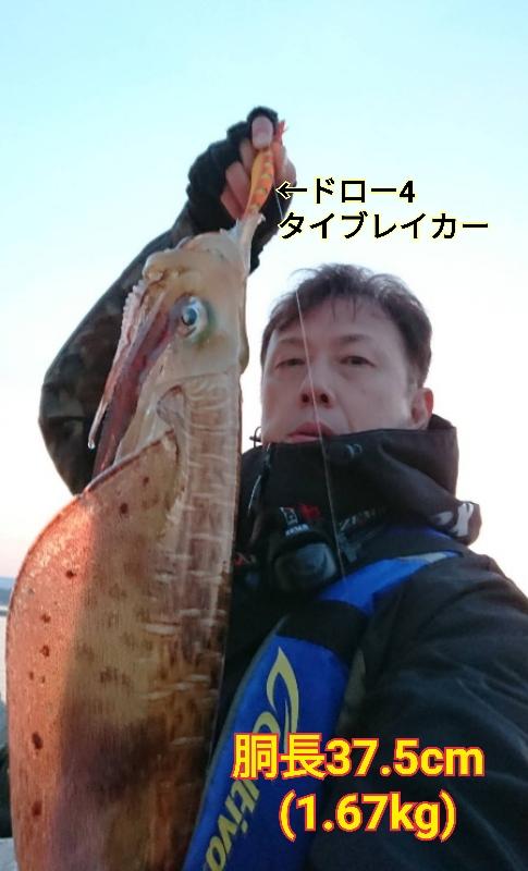 f:id:asanotsurigu:20190526082804j:plain