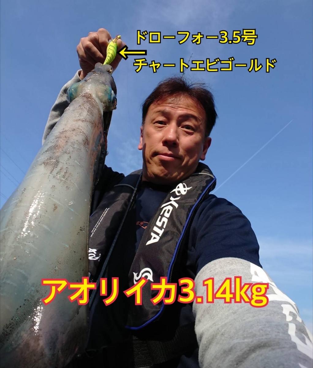 f:id:asanotsurigu:20190601114128j:plain