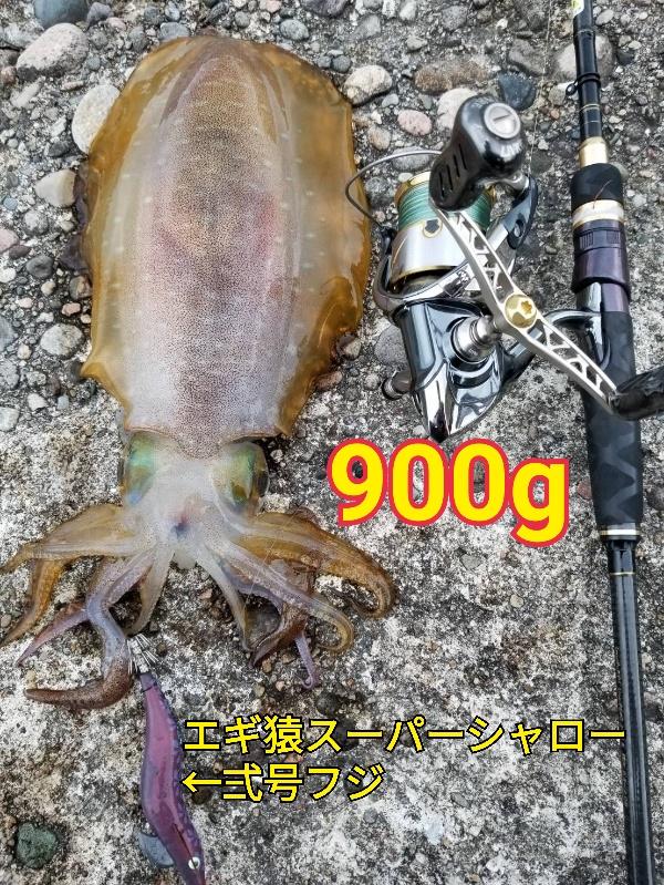 f:id:asanotsurigu:20190609171510j:plain