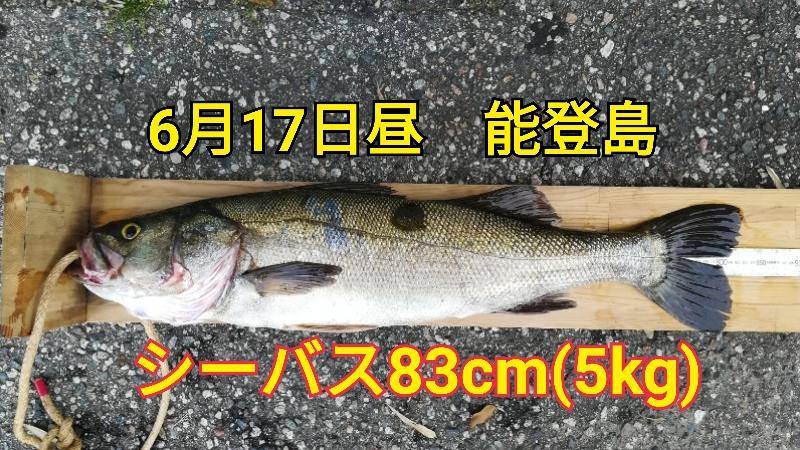 f:id:asanotsurigu:20190617171527j:plain