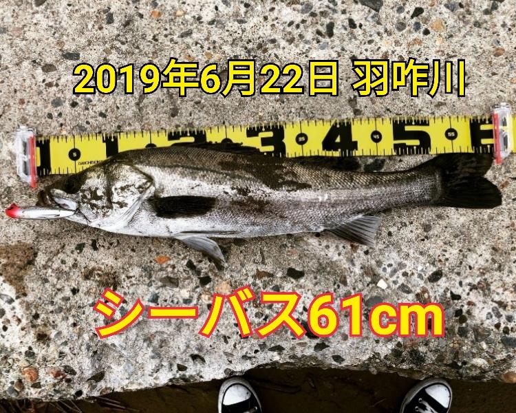 f:id:asanotsurigu:20190623210142j:plain