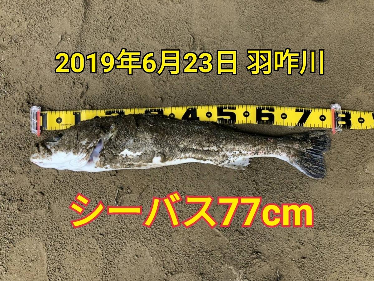 f:id:asanotsurigu:20190623210156j:plain