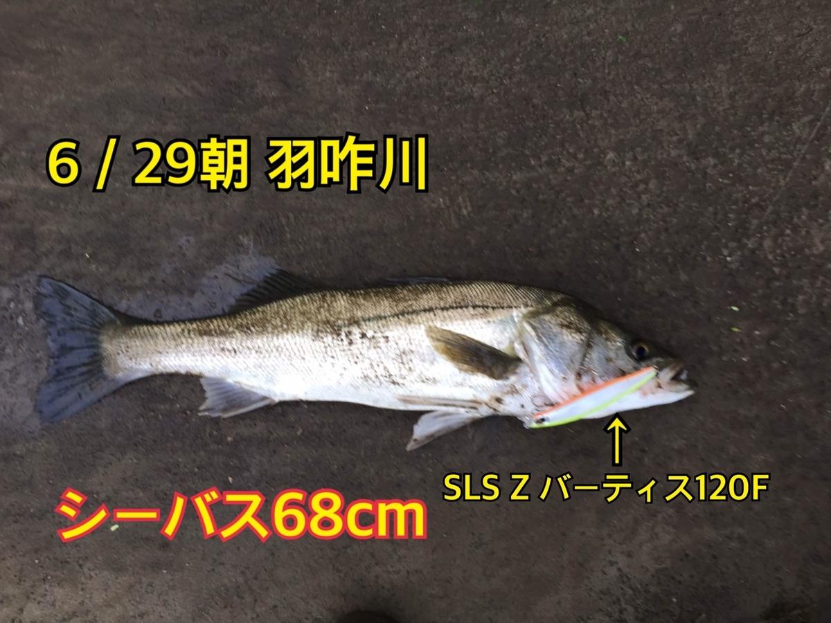 f:id:asanotsurigu:20190629125236j:plain
