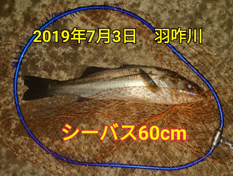 f:id:asanotsurigu:20190703213641j:plain