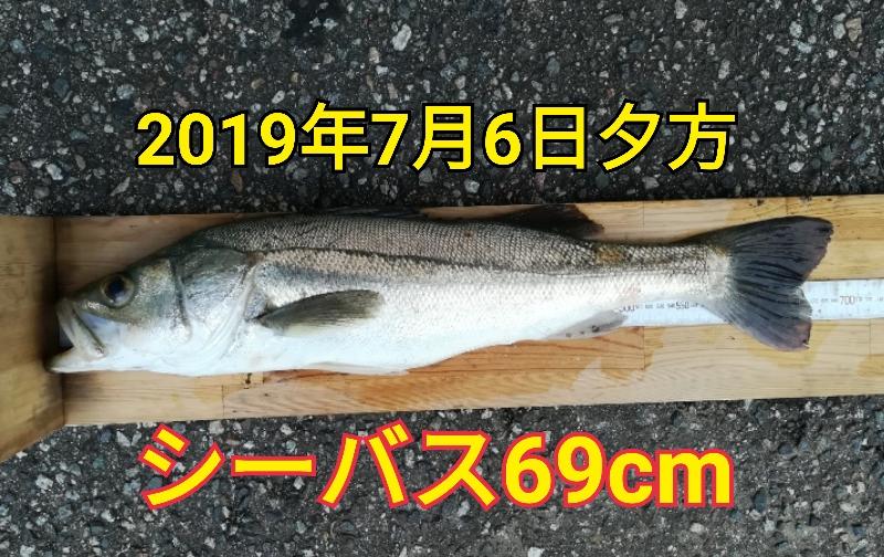 f:id:asanotsurigu:20190706184638j:plain