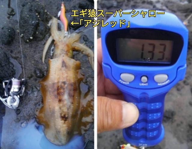 f:id:asanotsurigu:20190720085119j:plain