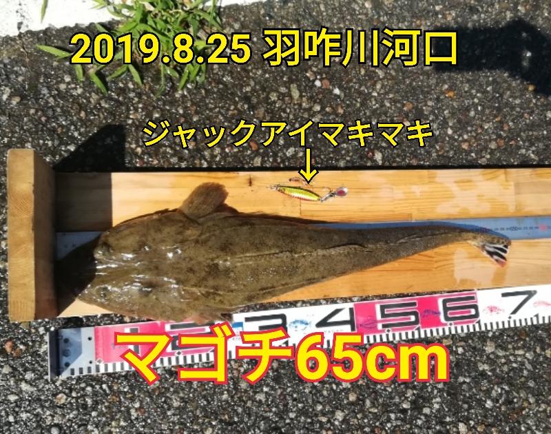 f:id:asanotsurigu:20190825104603j:plain