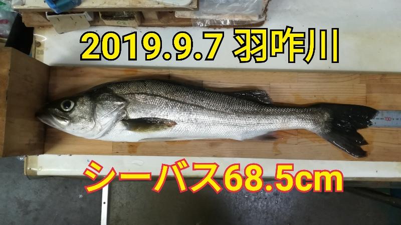 f:id:asanotsurigu:20190907193452j:plain