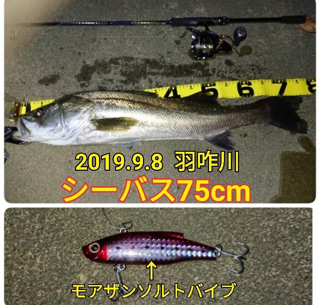 f:id:asanotsurigu:20190908210030j:plain
