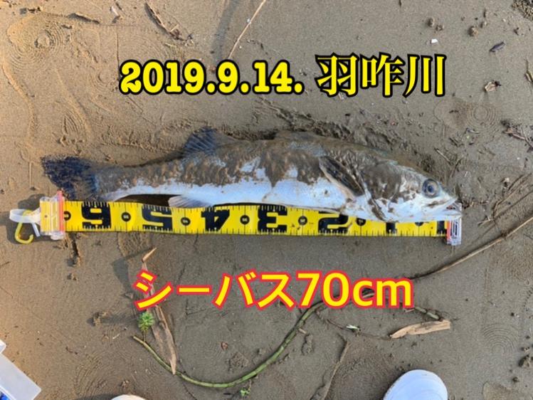 f:id:asanotsurigu:20190914074004j:plain