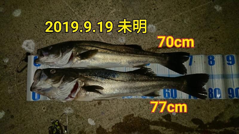 f:id:asanotsurigu:20190919100740j:plain