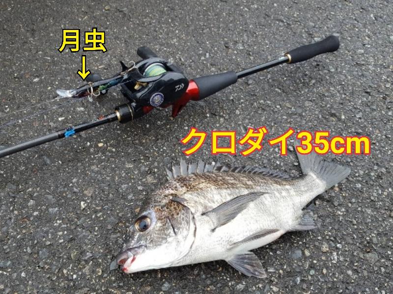 f:id:asanotsurigu:20190924121900j:plain