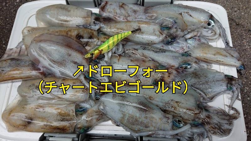 f:id:asanotsurigu:20190929115319j:plain