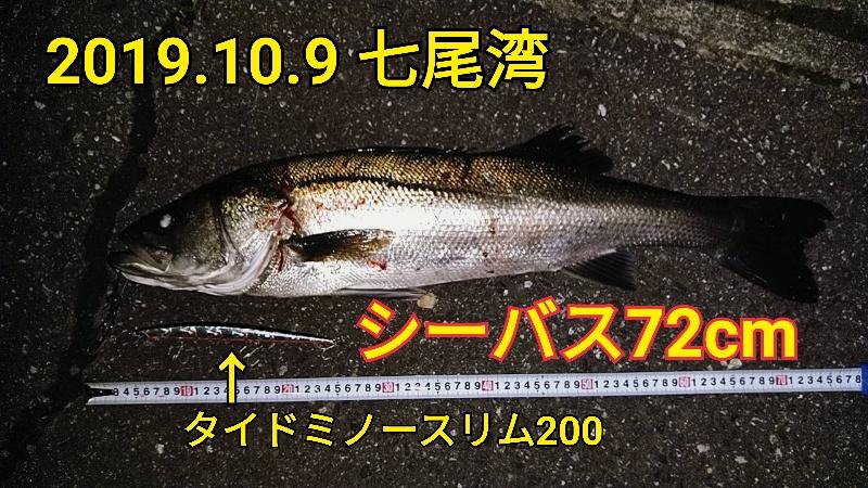 f:id:asanotsurigu:20191009231737j:plain