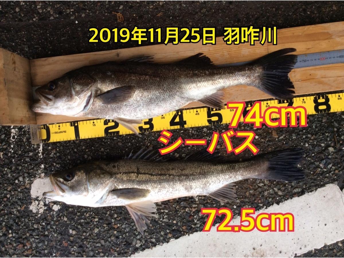 f:id:asanotsurigu:20191125185722j:plain