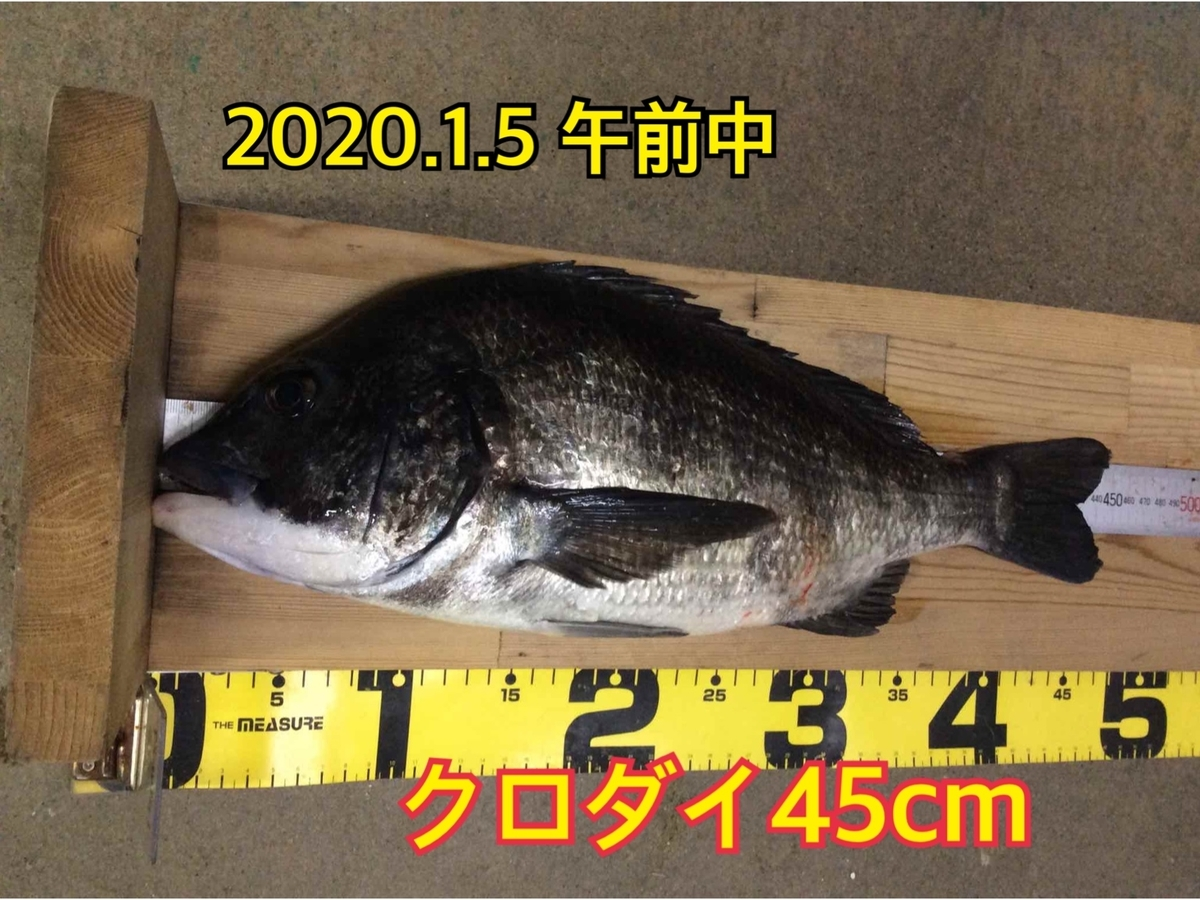 f:id:asanotsurigu:20200105121915j:plain