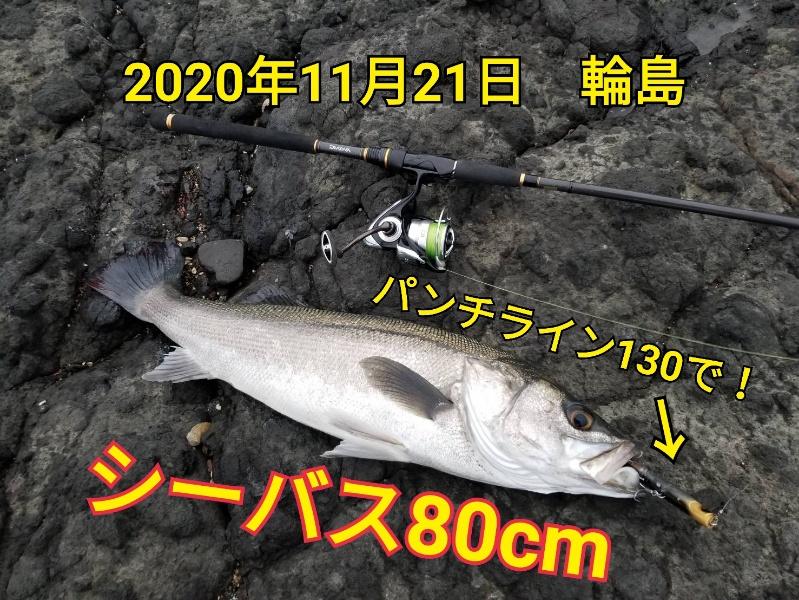 f:id:asanotsurigu:20201121180356j:plain