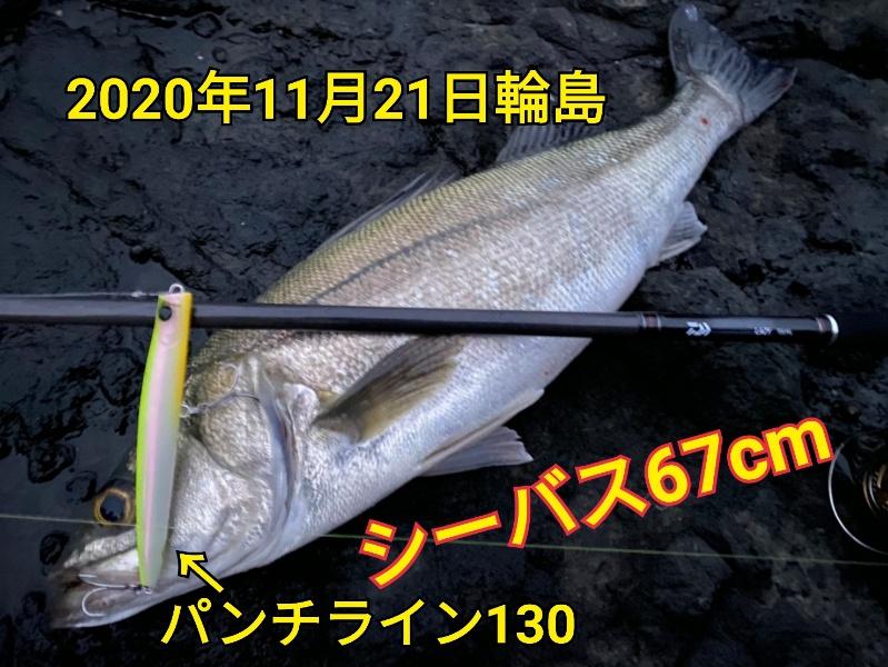 f:id:asanotsurigu:20201121180410j:plain