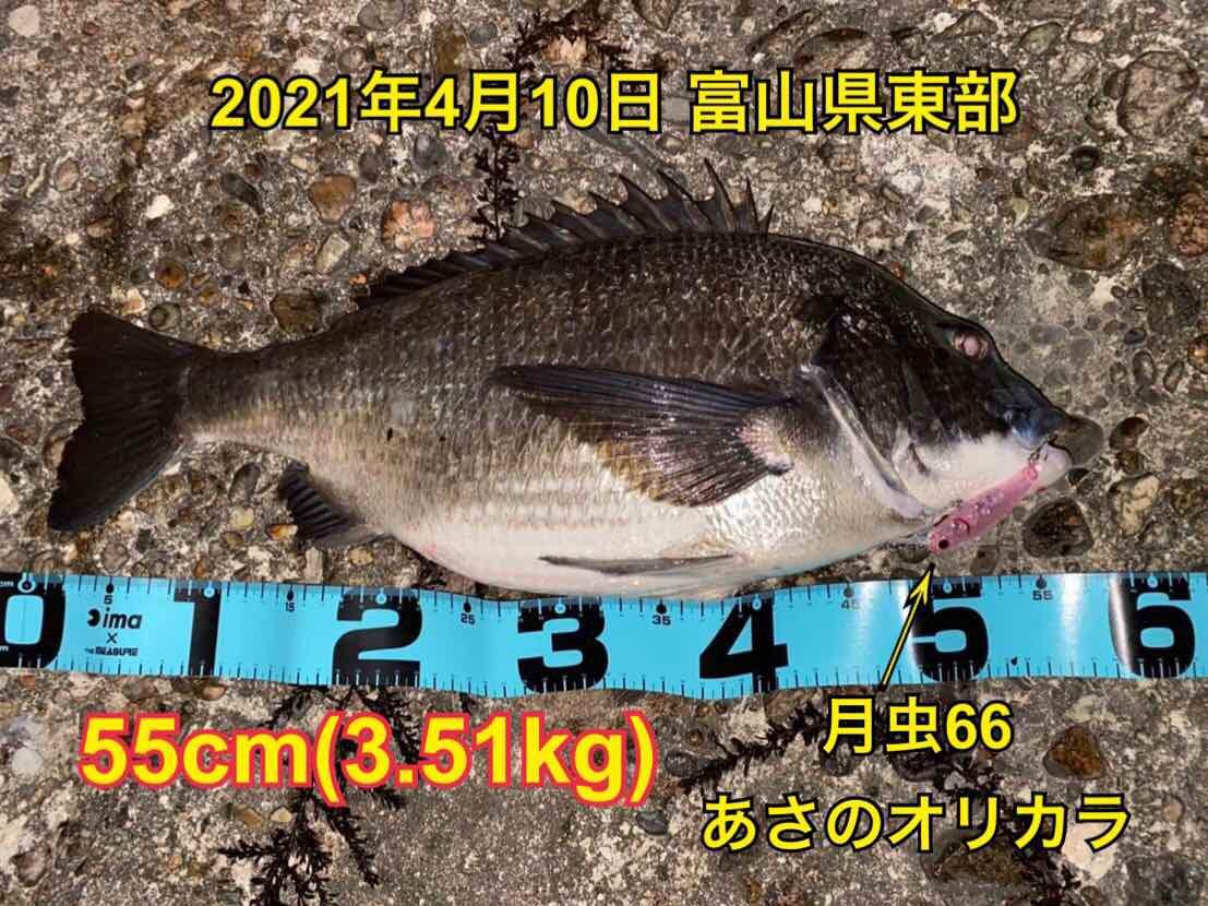f:id:asanotsurigu:20210410112019j:plain