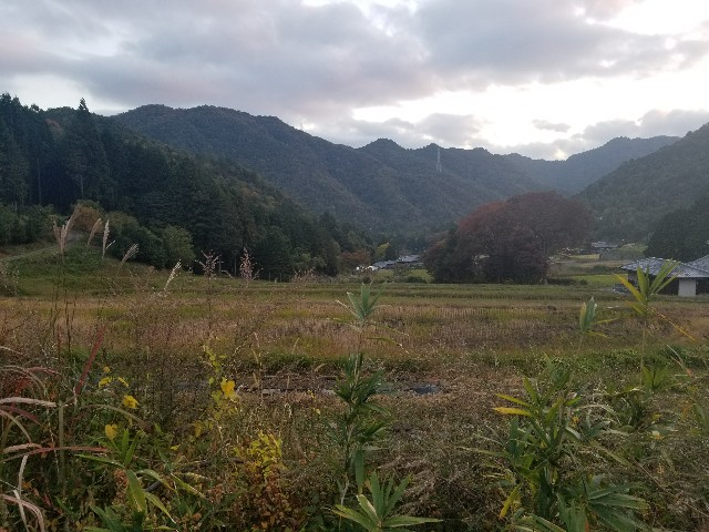 f:id:asatoyo:20181128180103j:image