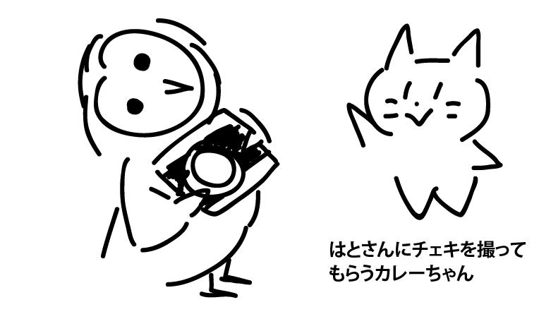 f:id:asayake_cs:20181016184552p:plain