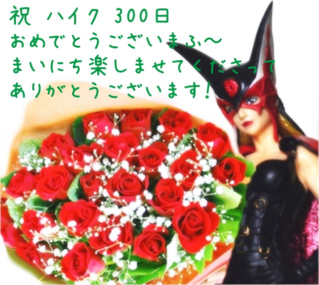 20101101144630