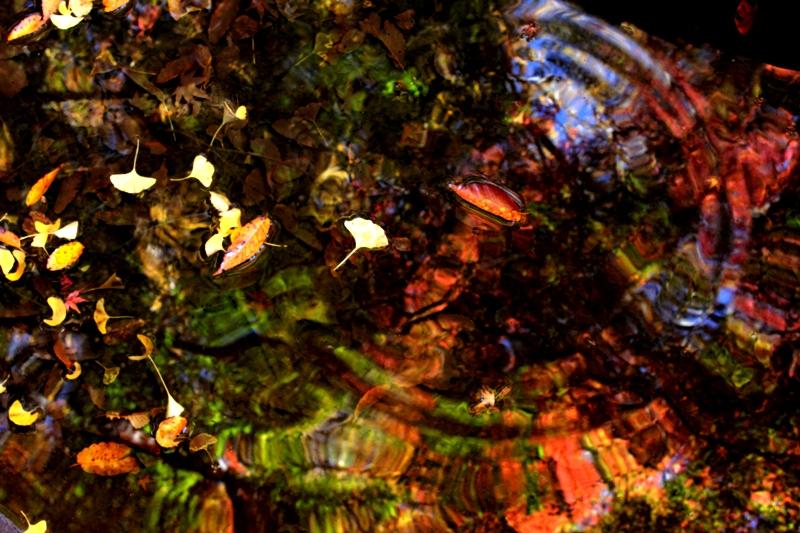 f:id:ashibano:20121119232516j:image