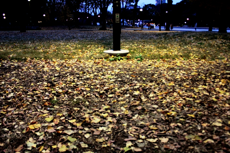 f:id:ashibano:20121203165228j:image