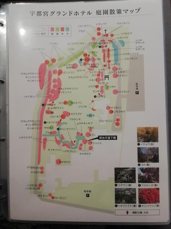 f:id:ashigehinba:20190403233552j:plain