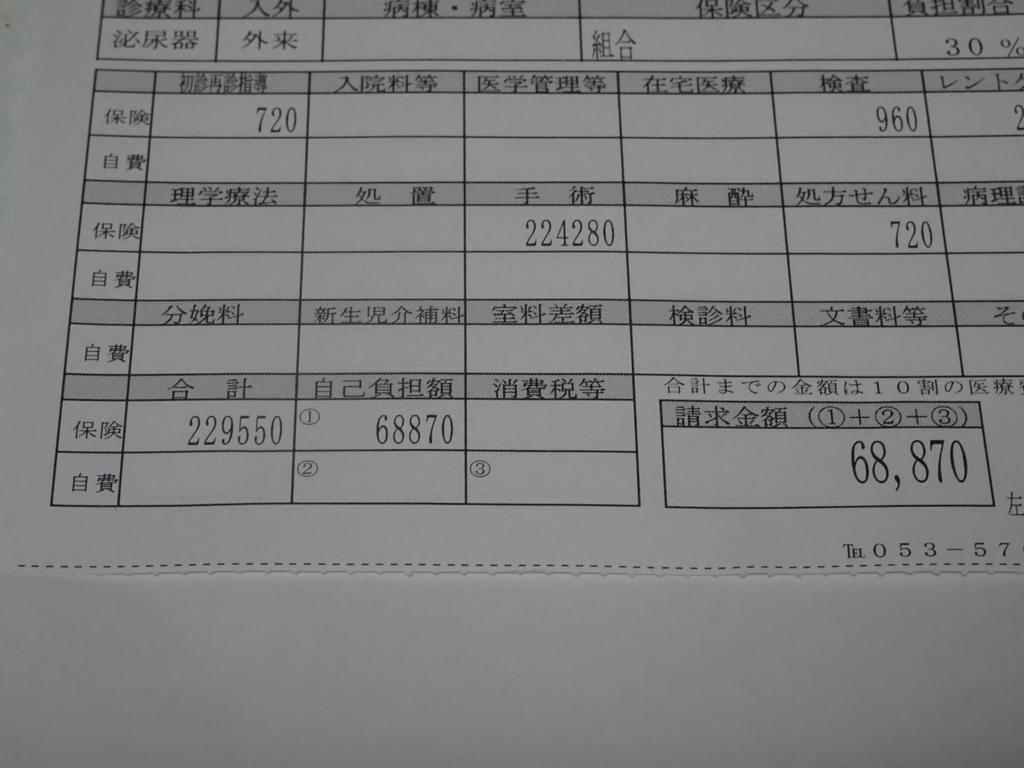f:id:ashinichi:20190204170906j:plain