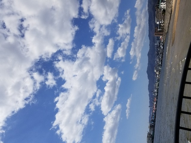 f:id:ashiyamiwa:20200320124222j:image
