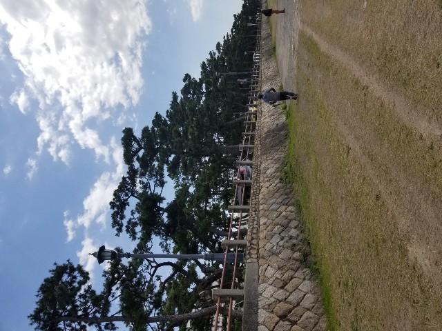 f:id:ashiyamiwa:20200320124359j:image