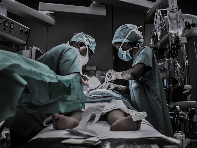 ケガや病気で治療が必要な場合の対処法