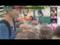 Khlong Toei Market Bugs