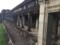 [Angkor Wat]