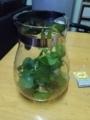 [Tea Red][Herb Mint]