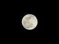 [Super Moon]20190121