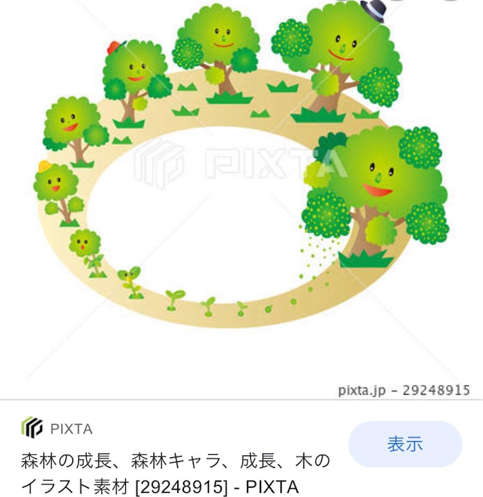 f:id:asiasiasiasi:20201209051950j:image