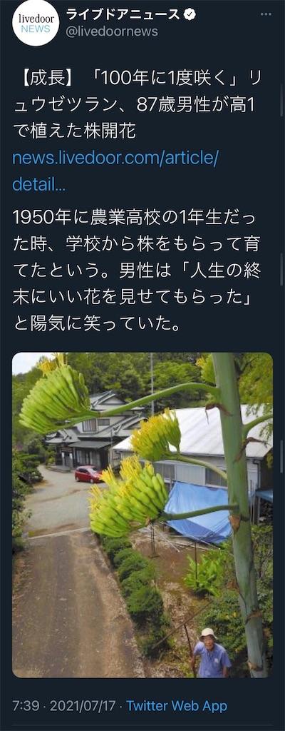 f:id:asiasiasiasi:20210718152439j:image